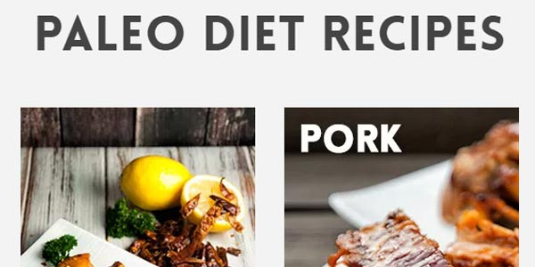 go to http://paleoleap.com/paleo-diet-recipes/