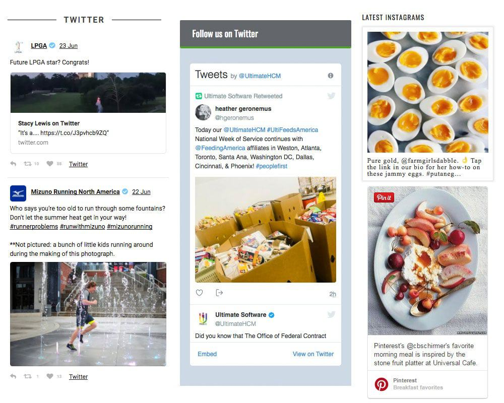 Examples of social media widgets in a sidebar.